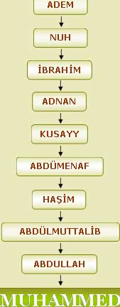 Hazreti İbrahim Kimdir ? Biyografisi, Hayatı, Eşi, Nereli, Kaç Yaşında, Öldü mü ?